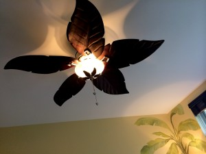 Cool ceiling fan