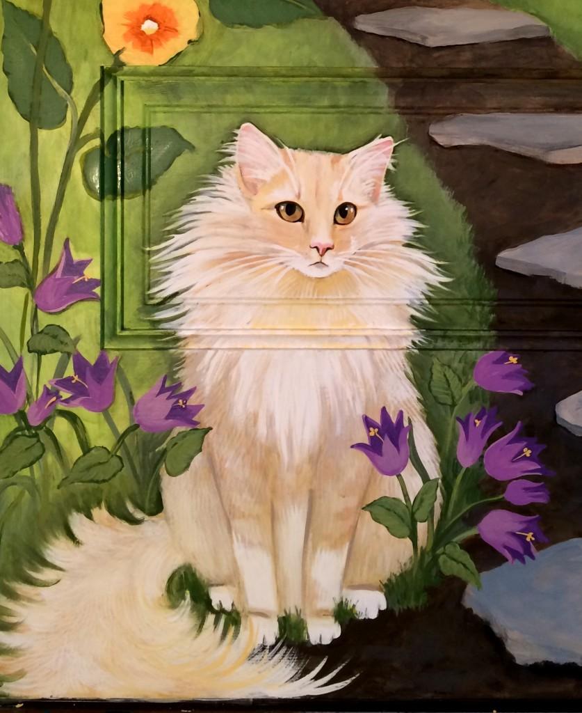 Gouda the cat
